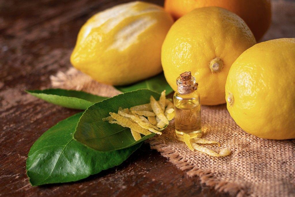 limones corteza 1024x683 2